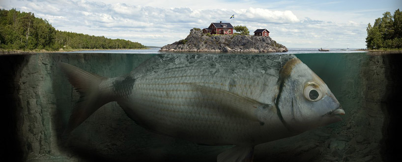 fishy_island
