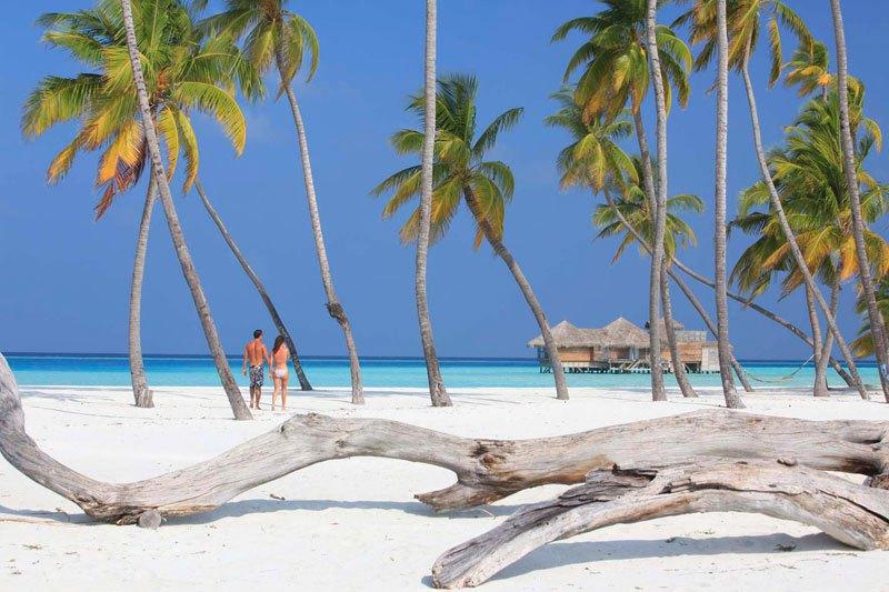 tripadvisor-2015-hotel-of-the-year-gili-lankanfushi-maldives-27