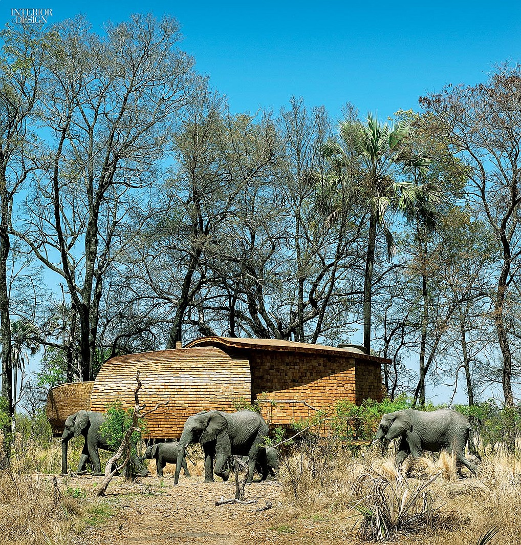 thumbs_60125-elephants-exterior-sandibe-okavango-safari-lodge-fox-browne-creative-michaelis-boyd-0715.jpg.0x1064_q90_crop_sharpen