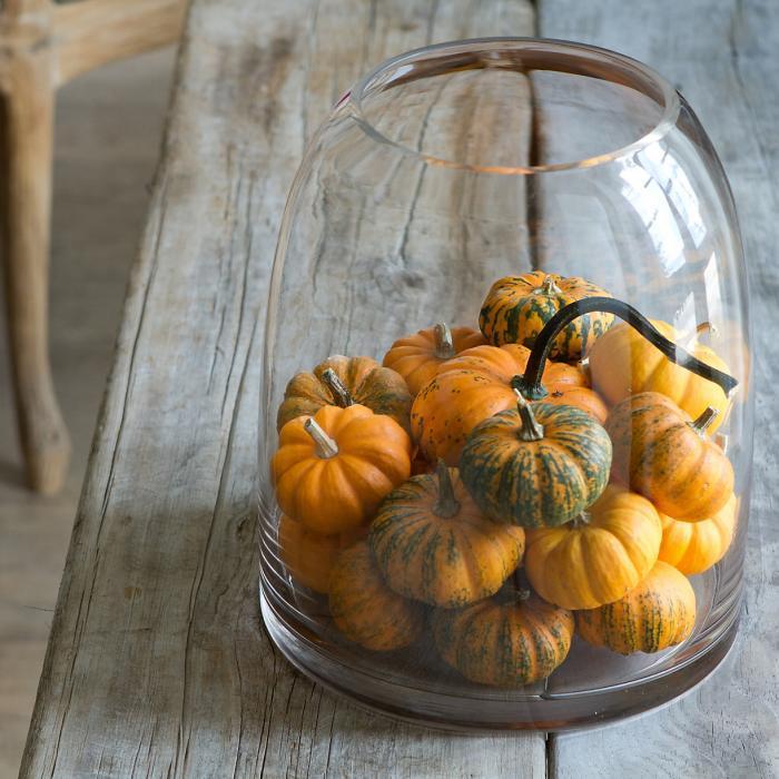 700_mini-pumpkin-bell-jar