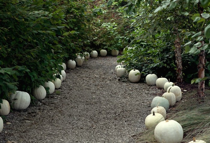 curb-appeal-white-pumpkins-halloween-gravel-path-gardenista
