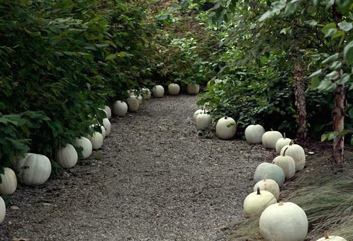 curb-appeal-white-pumpkins-halloween-gravel-path-gardenista