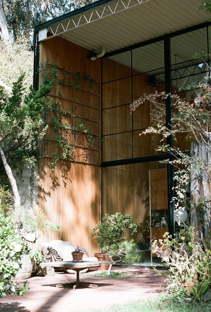 eames-house-la-garden-view-gardenista