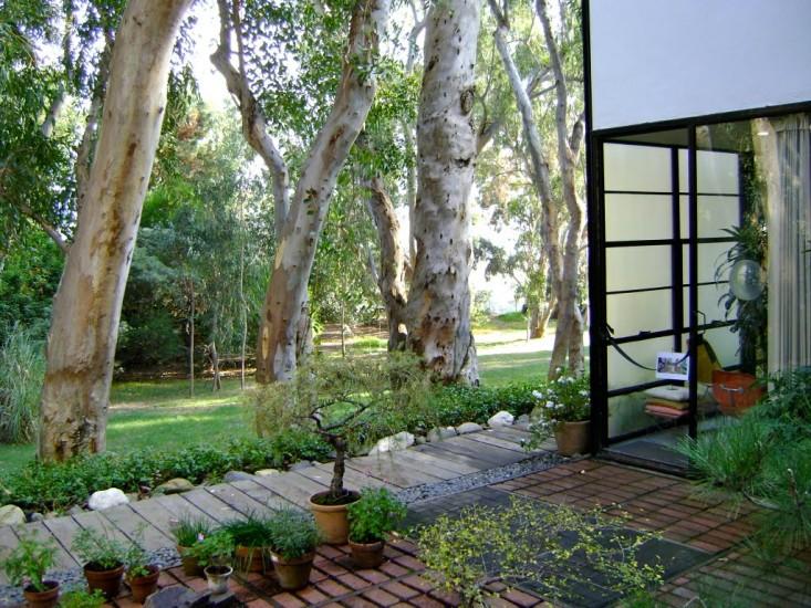 eames-house-meadow-gardenista