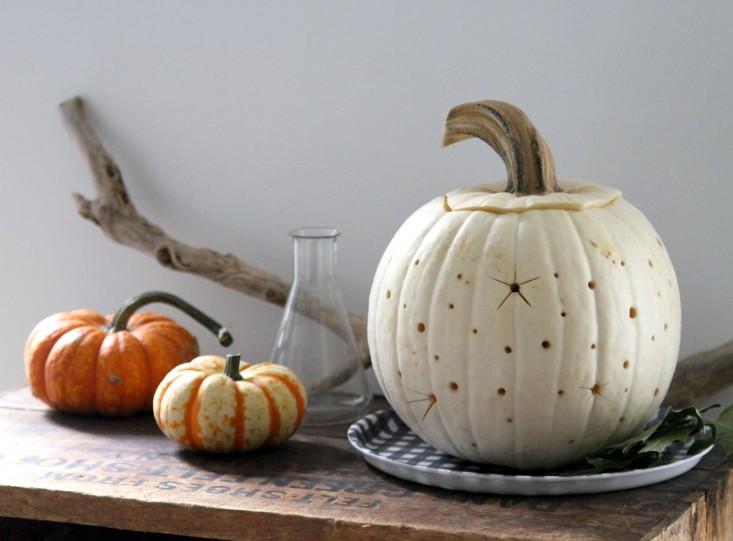 stars-pumpkin-9-erinboyle-gardenista